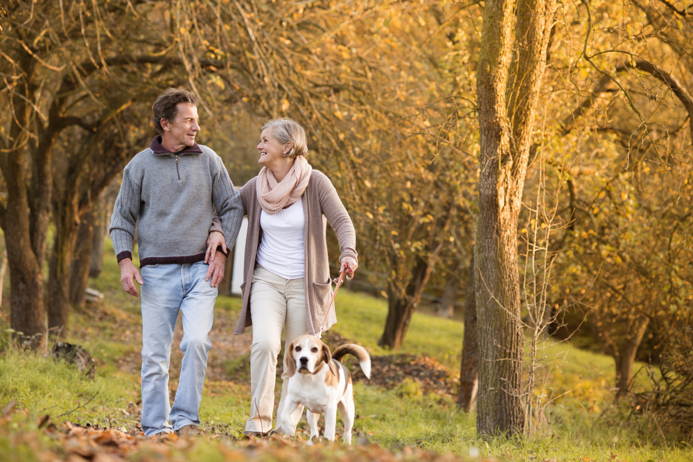 3 Tips For Long-Distance Caregivers: Ways to Handle Dementia